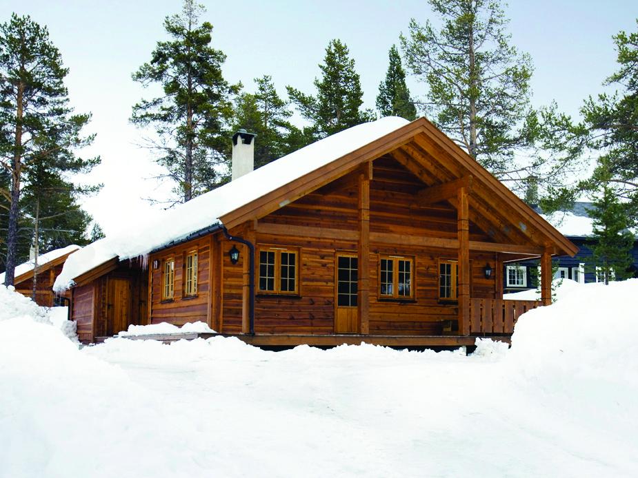 Geilo Forest Cabin