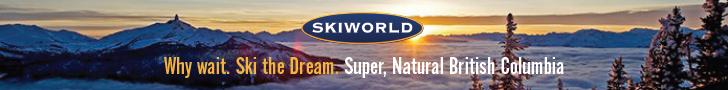 304963 Skiworld Banner