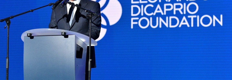 Leonardo DiCaprio Foundation Joins Battle Against Bulgarian Ski Area Expansion