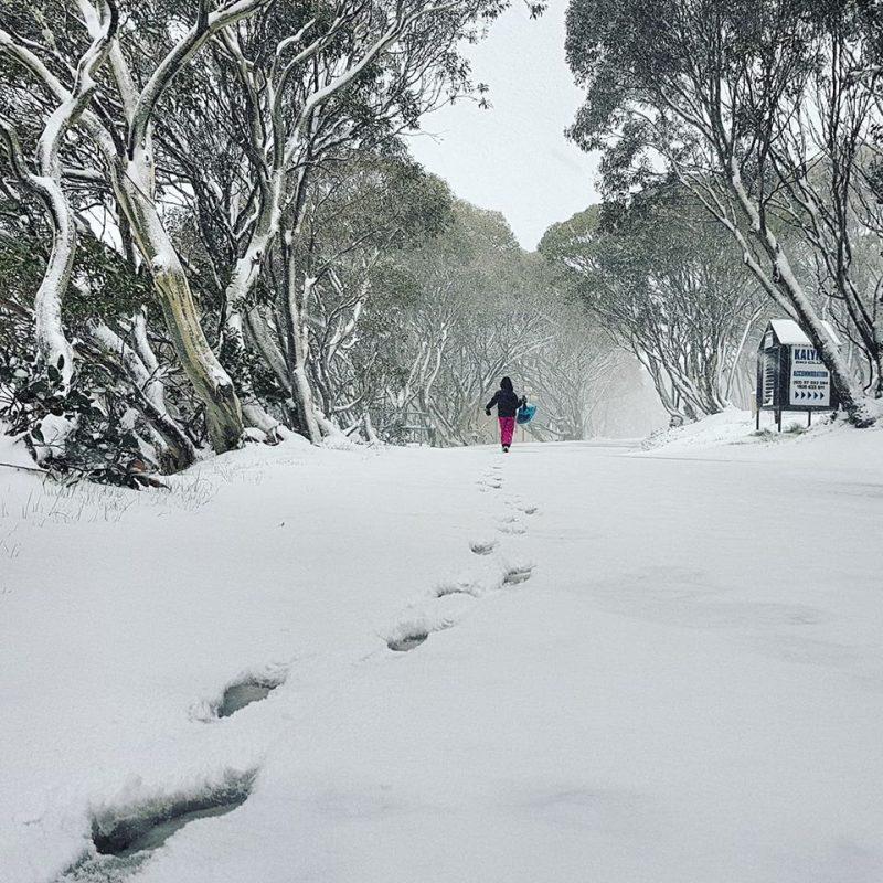 Unusual snow in November in Australia
