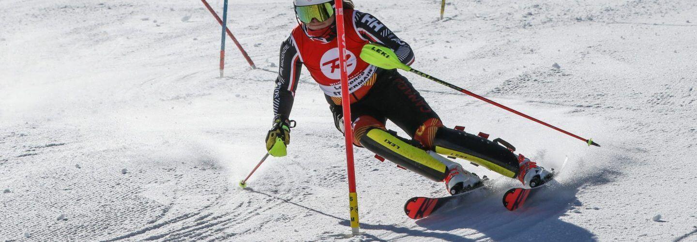 Bollé Alpine Canada ALPIN